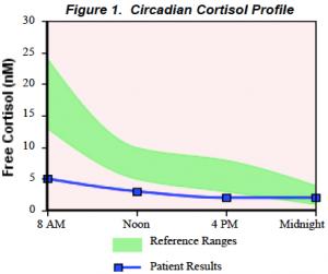 cortisol rhythm (fatigued) adrenal fatigue