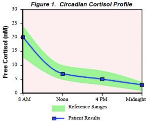 cortisol rhythm (normal) adrenal fatigue