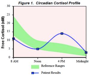 cortisol rhythm (spike) adrenal fatigue
