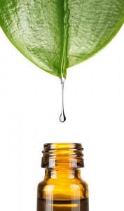 alternative medicine influenza virus flu