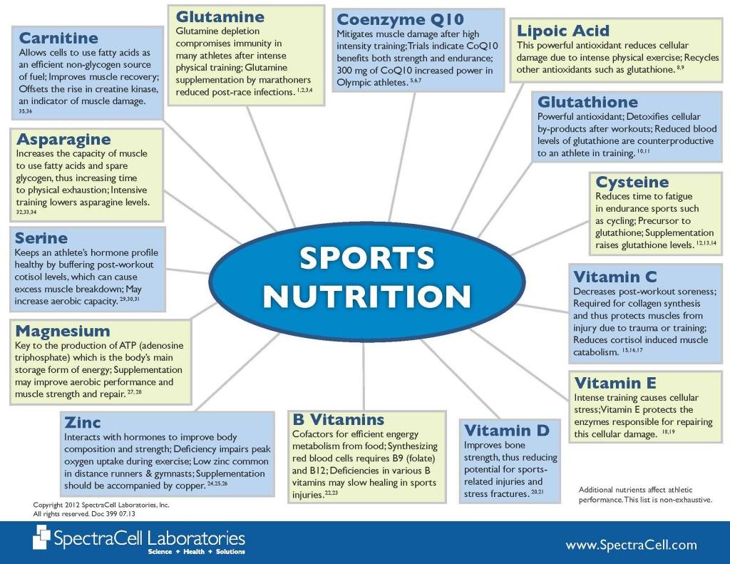 sports nutrition wheel