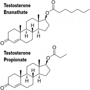 testosterone enanthate and testosterone propionate structure replacement therapy